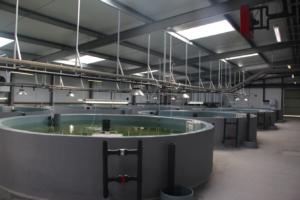 Instalaciones de incubacion
